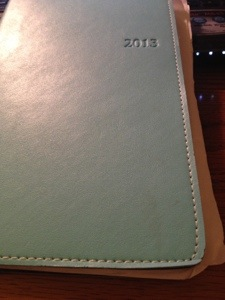 2013 Planner of Fun